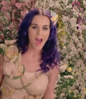 Katy_Perry_-_Wide_Awake_441.jpg